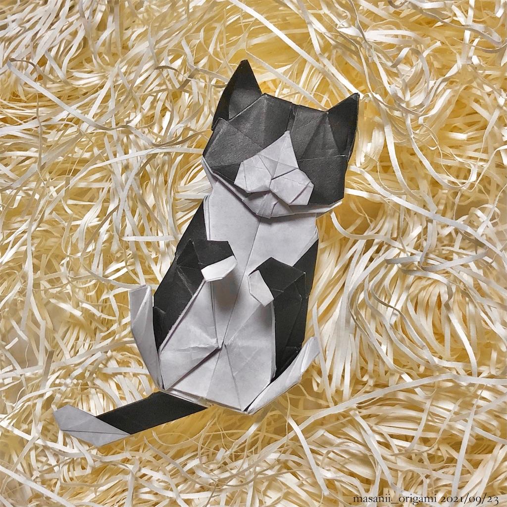 f:id:masanii_origami:20210922231752j:image
