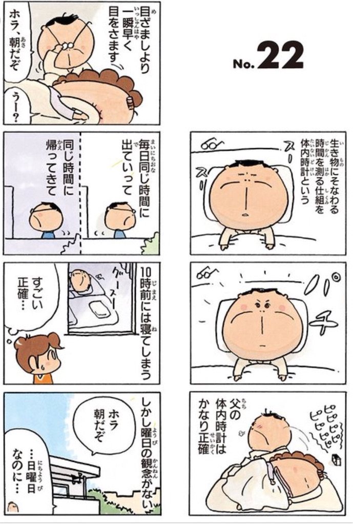 f:id:masanori-kato1972:20180602104700j:image