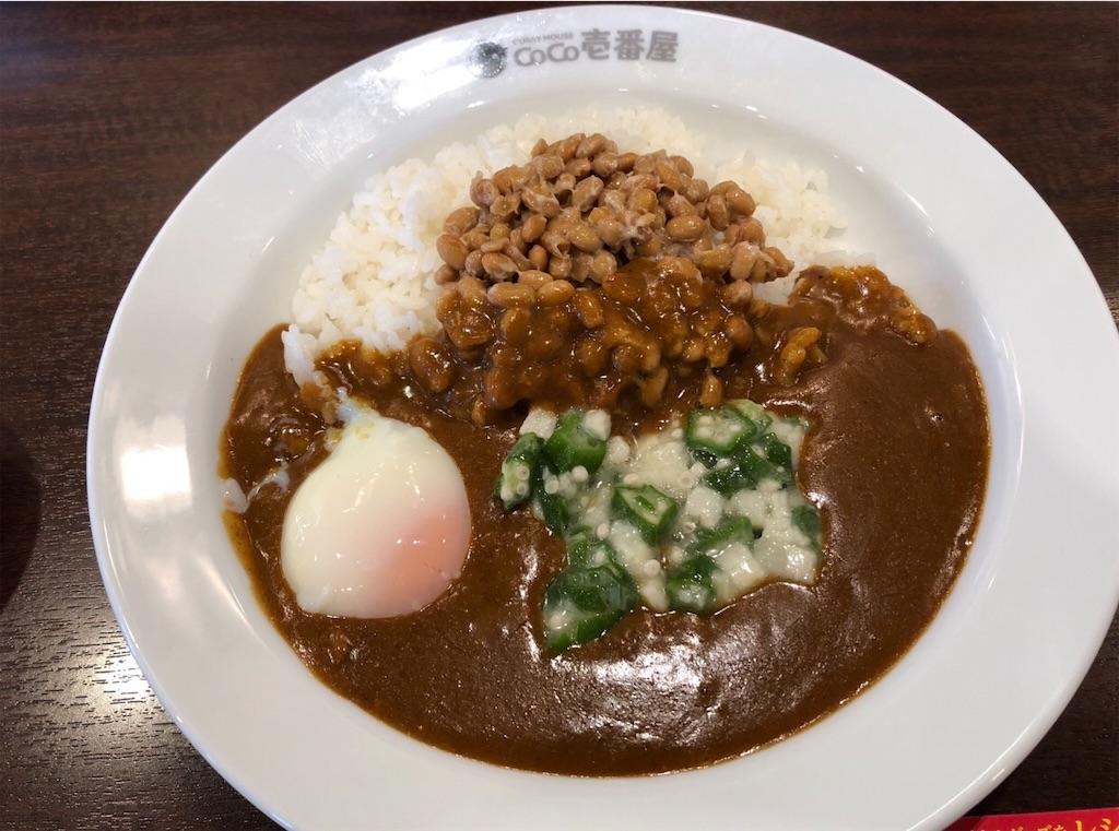 f:id:masanori-kato1972:20190203123035j:image