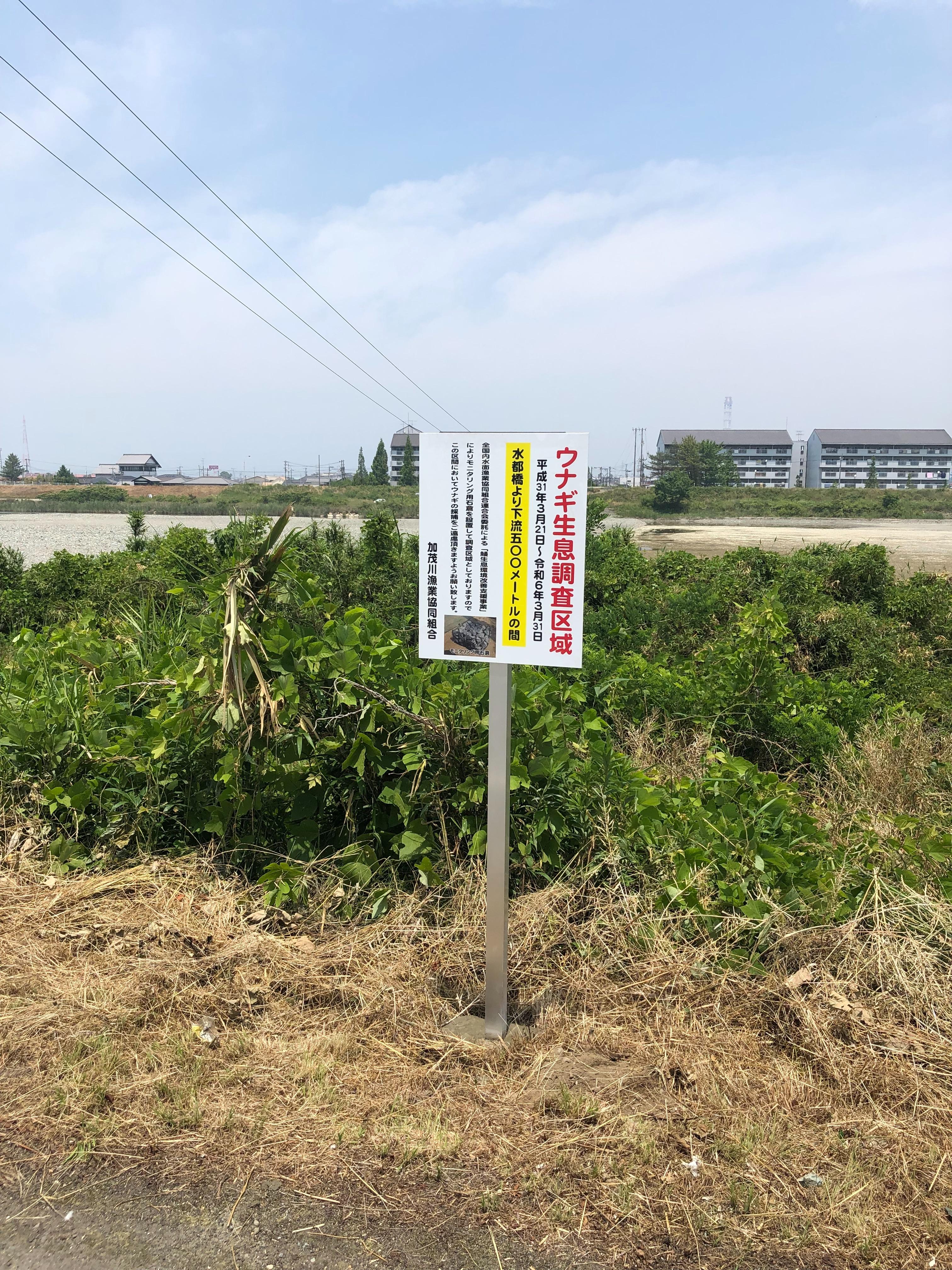 f:id:masanori-kato1972:20190606180703j:image