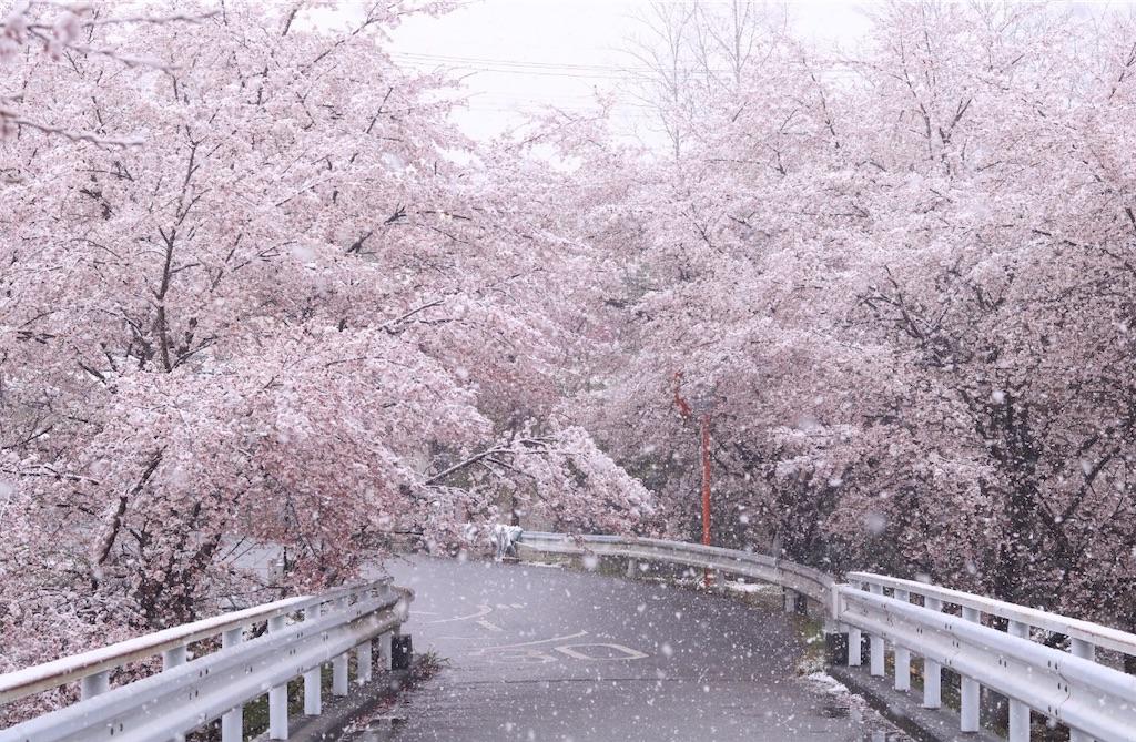 f:id:masanori-kato1972:20200329212256j:image