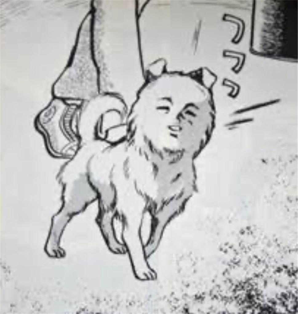 f:id:masanori-kato1972:20200601210019j:image