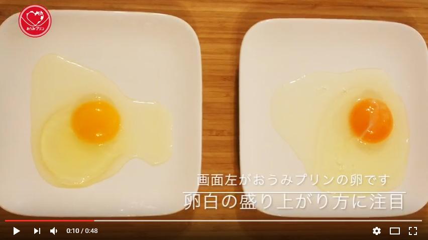 f:id:masanori1989:20160725165222j:plain