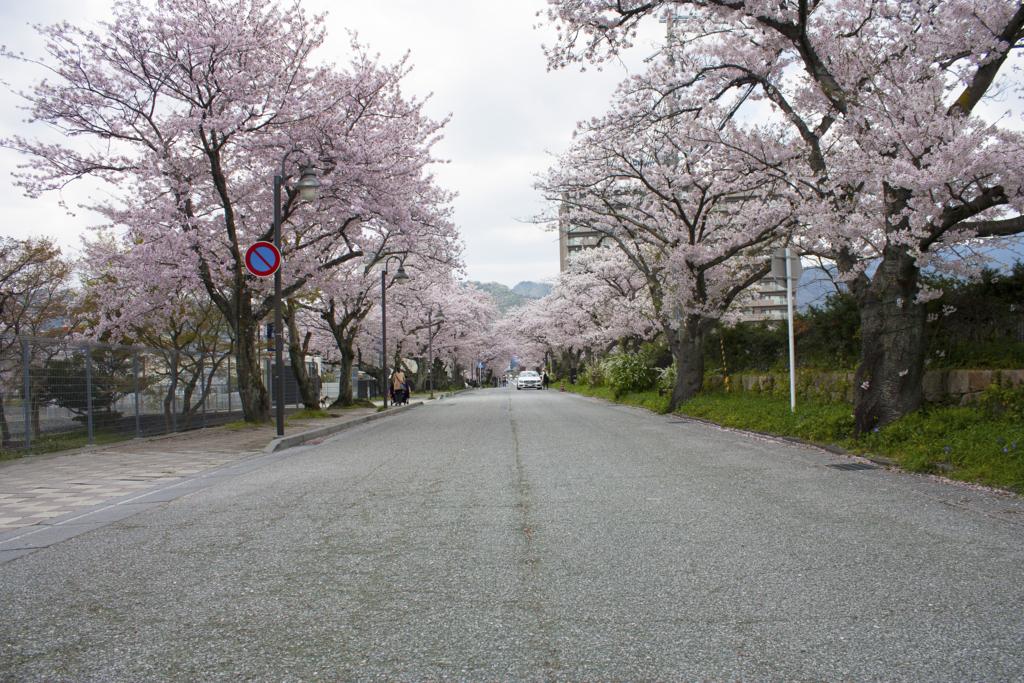 f:id:masanori1989:20170413123434j:plain