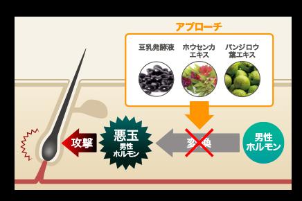 f:id:masanori1989:20170418165601p:plain