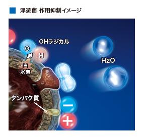f:id:masanori1989:20170624145647p:plain