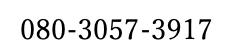 f:id:masaomikono:20201115122404p:plain