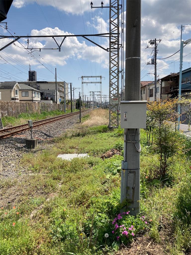 f:id:masaru-arameya:20210411152944j:image