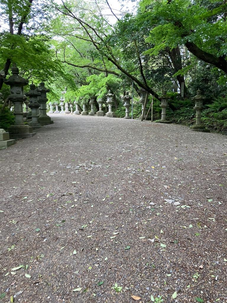 f:id:masaru-arameya:20210419094022j:image