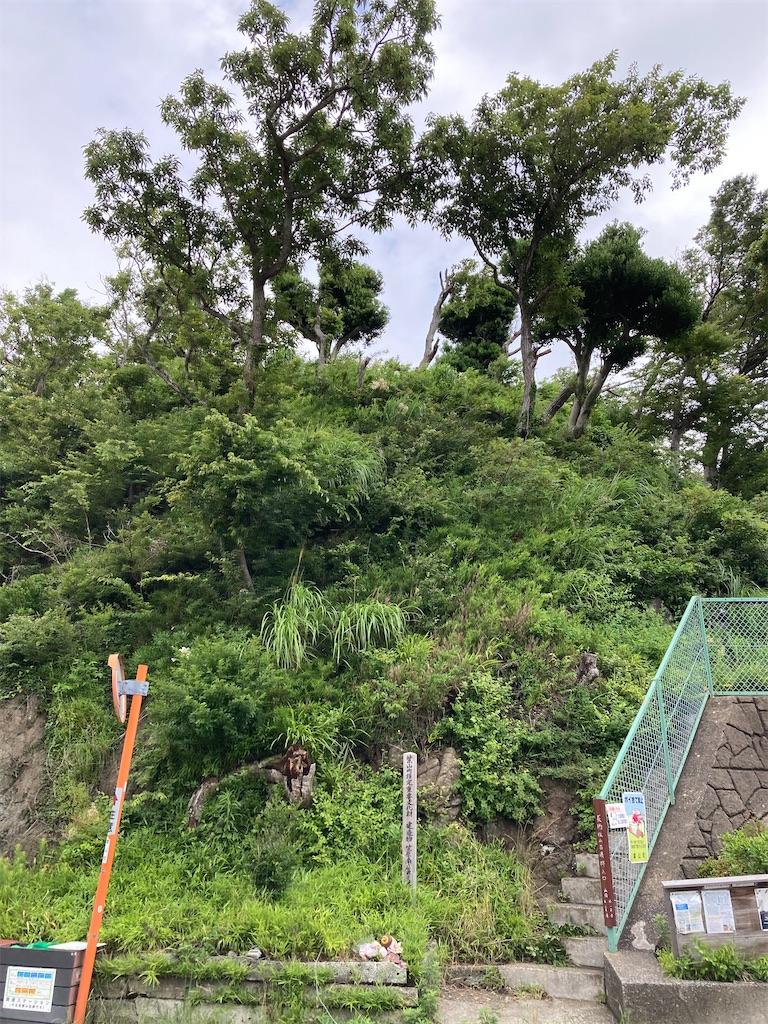 f:id:masaru-arameya:20210605155511j:image