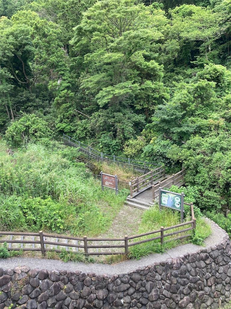 f:id:masaru-arameya:20210605160244j:image