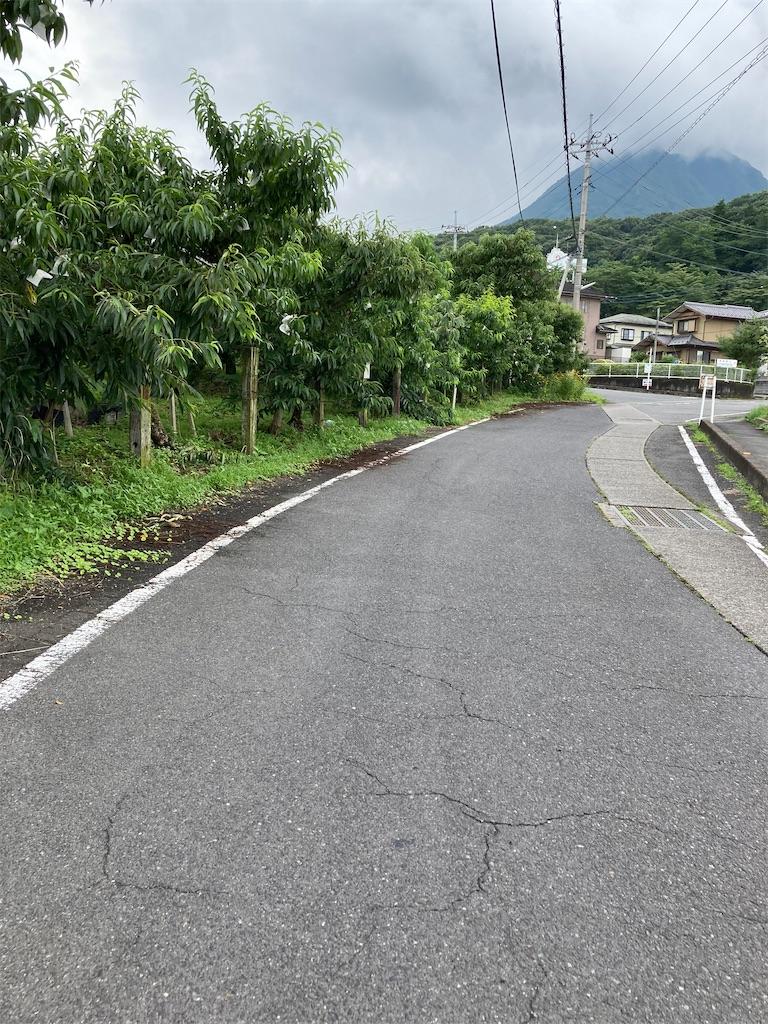 f:id:masaru-arameya:20210712065347j:image