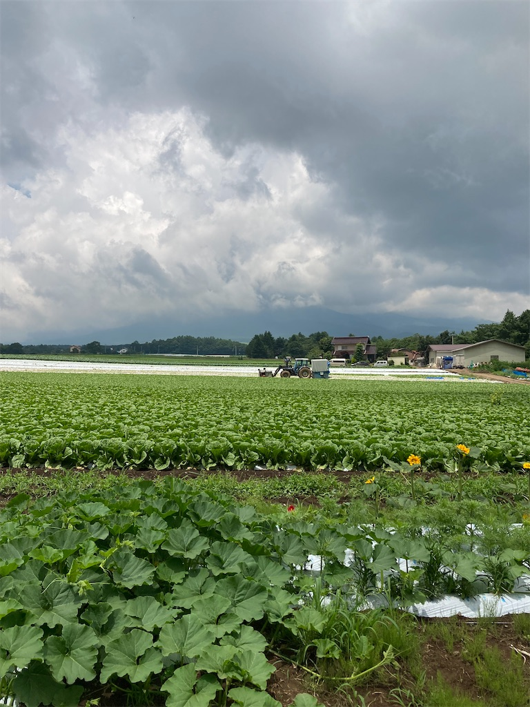 f:id:masaru-arameya:20210724193613j:image
