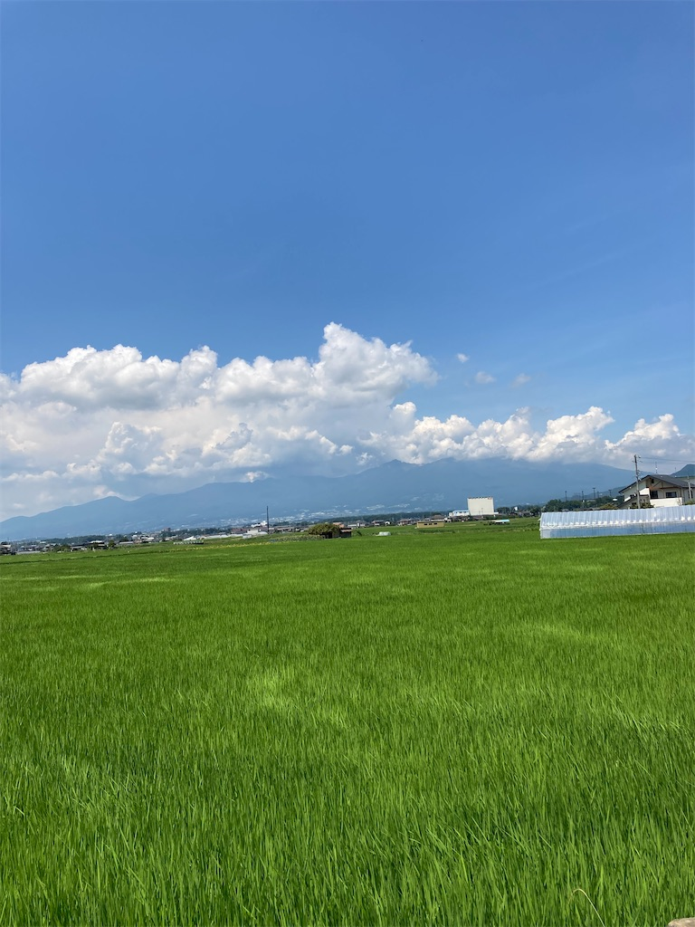 f:id:masaru-arameya:20210724200423j:image