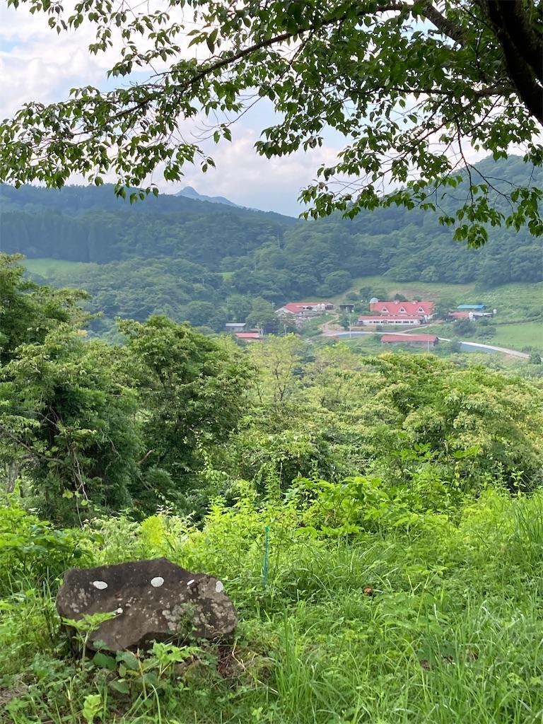 f:id:masaru-arameya:20210724201246j:image
