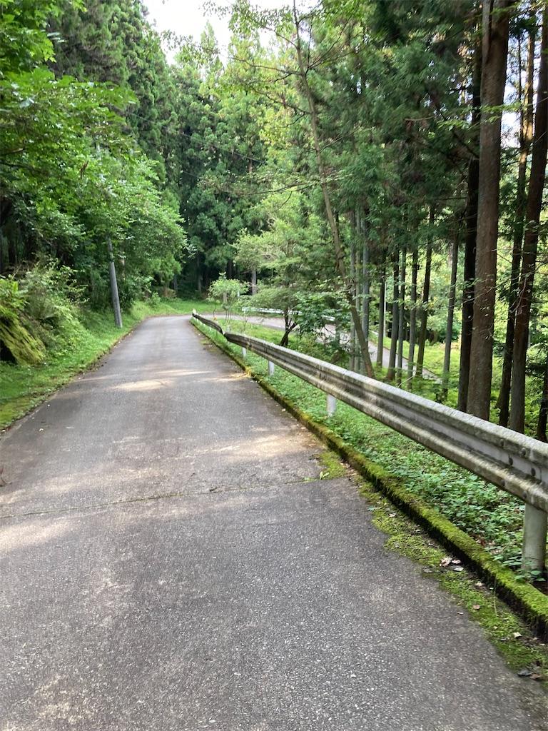 f:id:masaru-arameya:20210724201549j:image