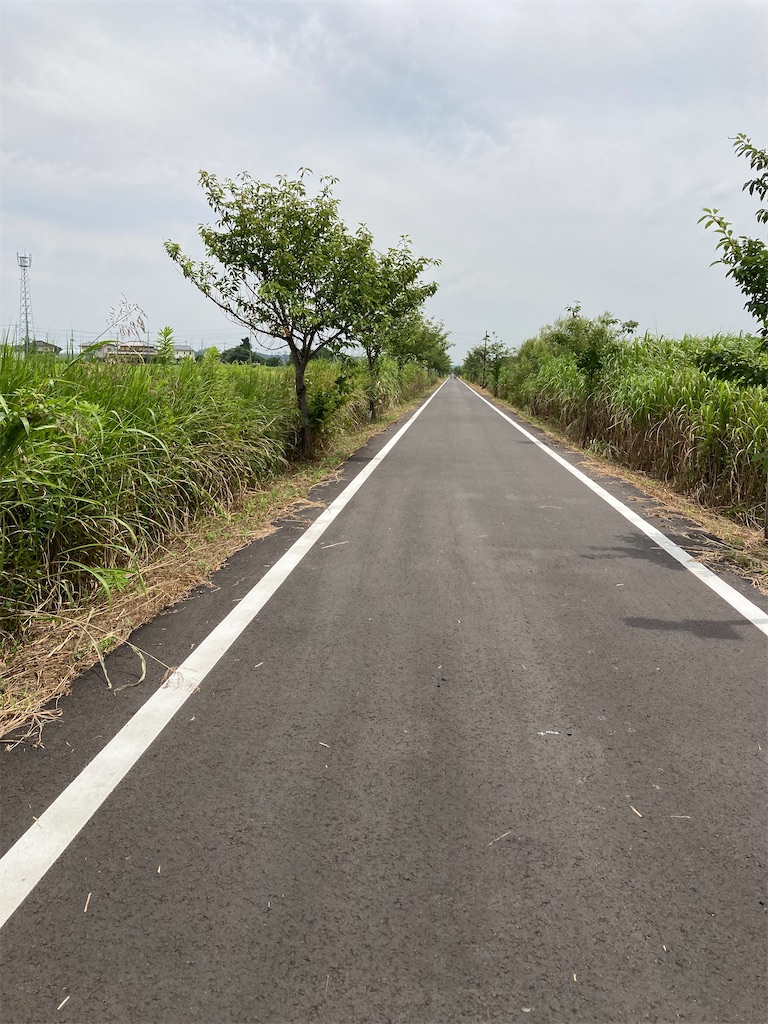 f:id:masaru-arameya:20210727135111j:image