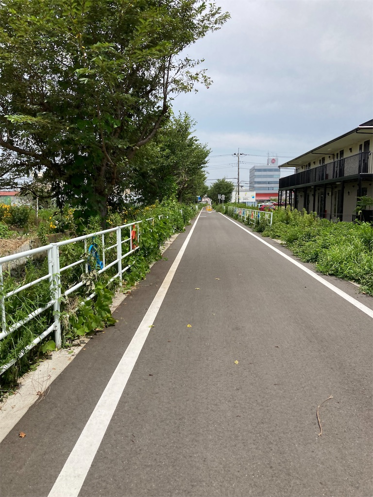 f:id:masaru-arameya:20210727140012j:image