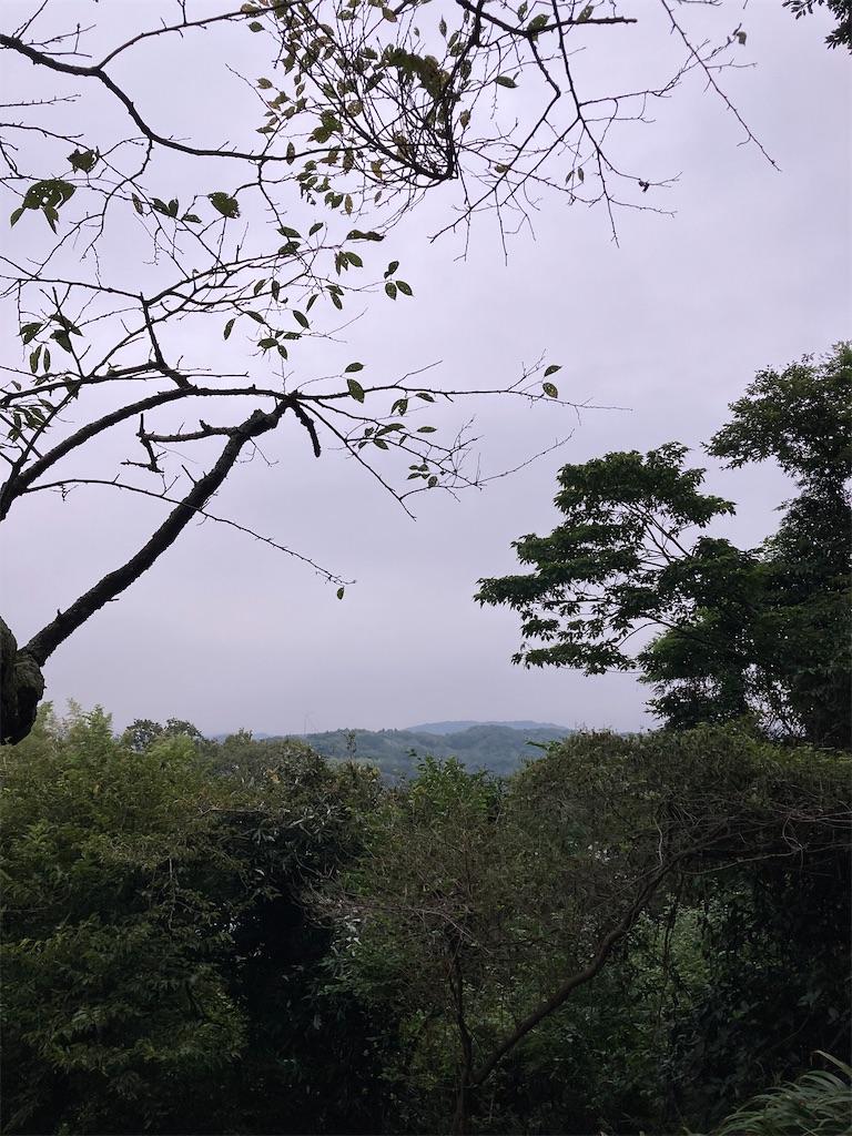f:id:masaru-arameya:20210901143924j:image