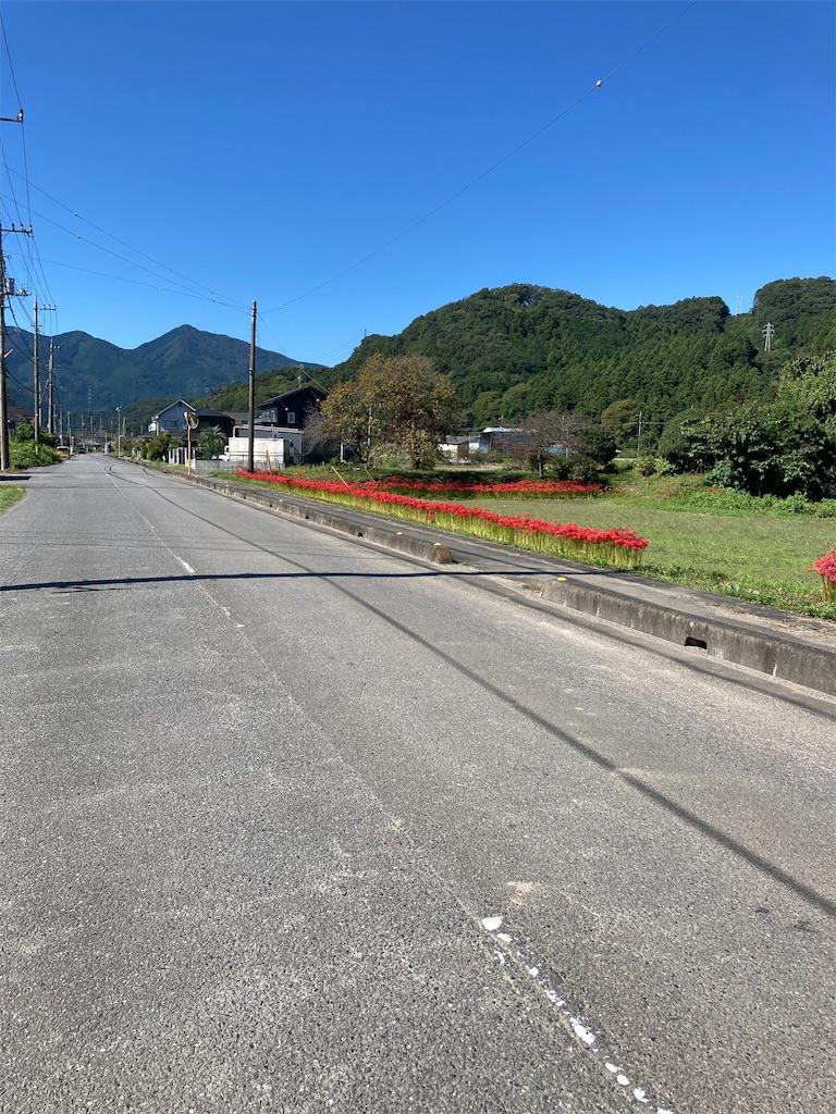 f:id:masaru-arameya:20210921142559j:image