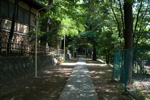f:id:masaru-masaru-3889:20160811110740j:plain