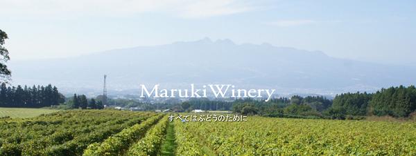 f:id:masaru-masaru-3889:20181112134527p:plain
