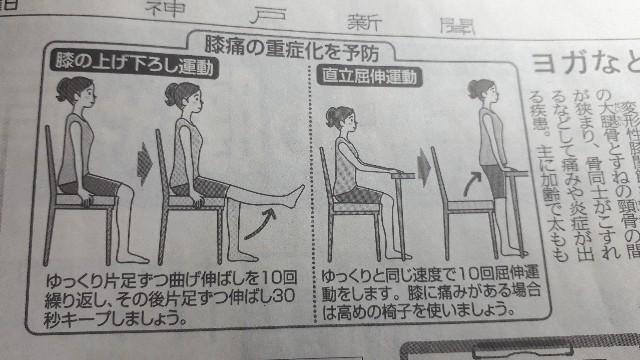 膝痛重症化予防の運動イラスト