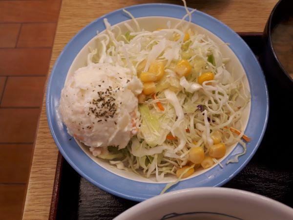 松屋本日発売「うまトマハンバーグ定食2019」のサラダ