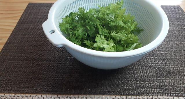 【レシピ パスタ】わさび菜とツナのスパゲッティの材料(オリジナル写真)