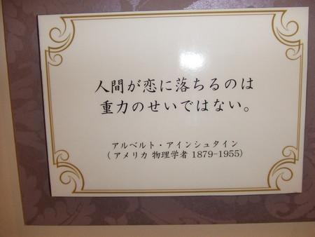 20080531114615