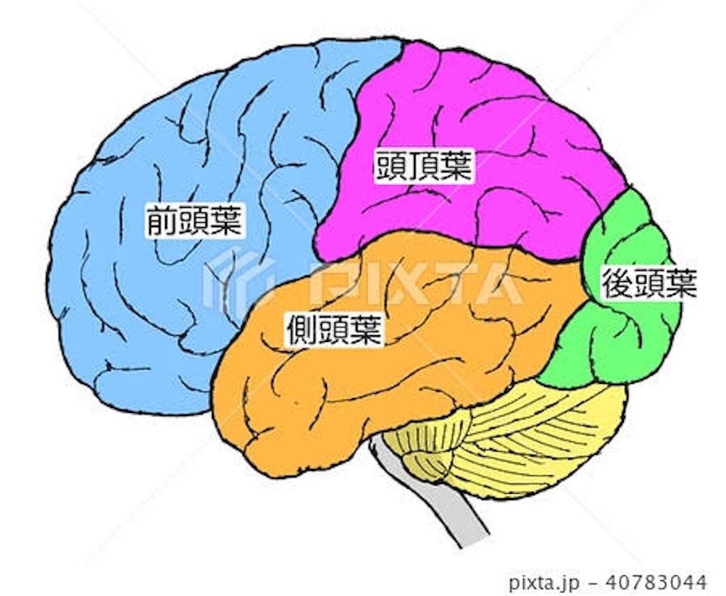 f:id:masataka1011:20190515093224j:image