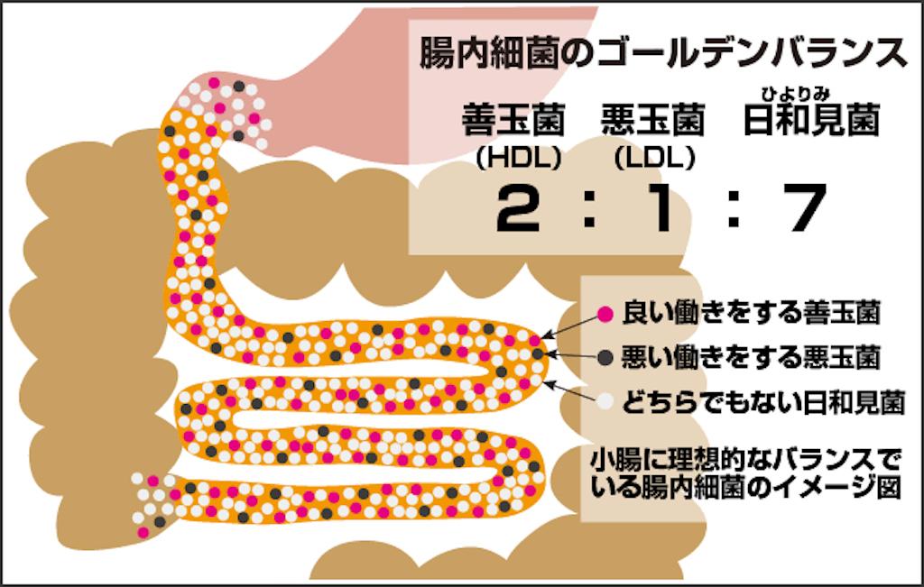 f:id:masataka1011:20190924152240p:image
