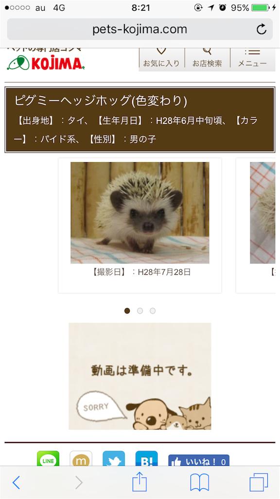 f:id:masato-au-smartphone:20160820013540p:image