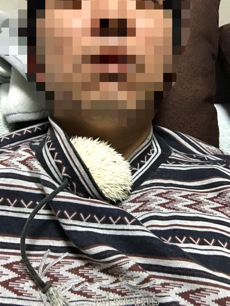 f:id:masato-au-smartphone:20170320004344p:image
