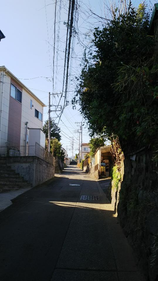 f:id:masato19641105:20190119125305j:plain