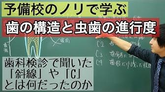 f:id:masato19641105:20191106224742j:plain