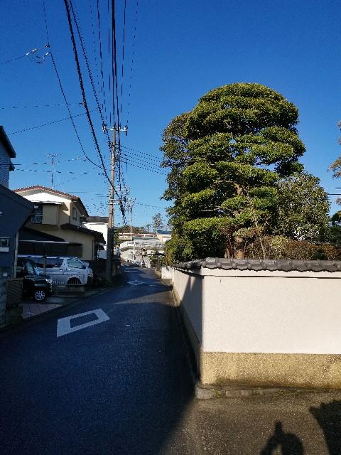 f:id:masato19641105:20200305085110j:image