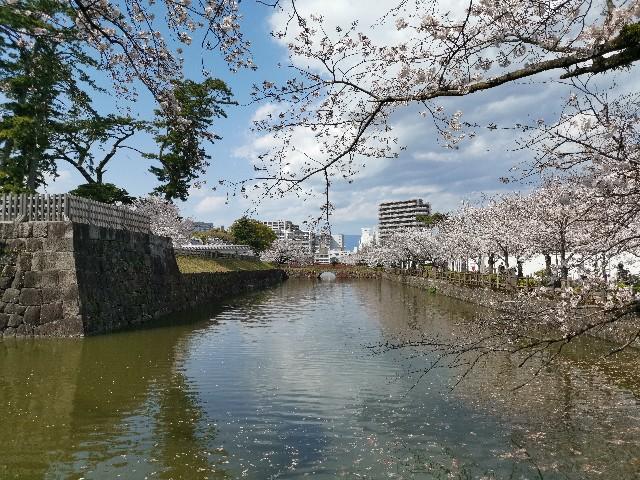 f:id:masato19641105:20200402200123j:image