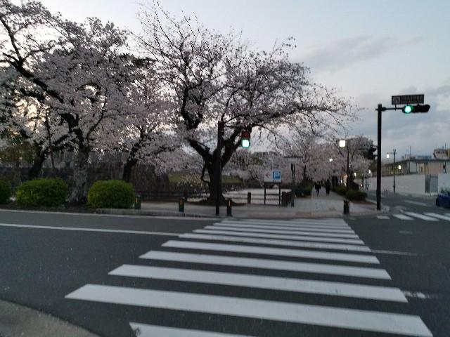 f:id:masato19641105:20200404181721j:image