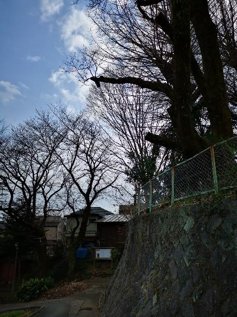 f:id:masato19641105:20210309214503j:image