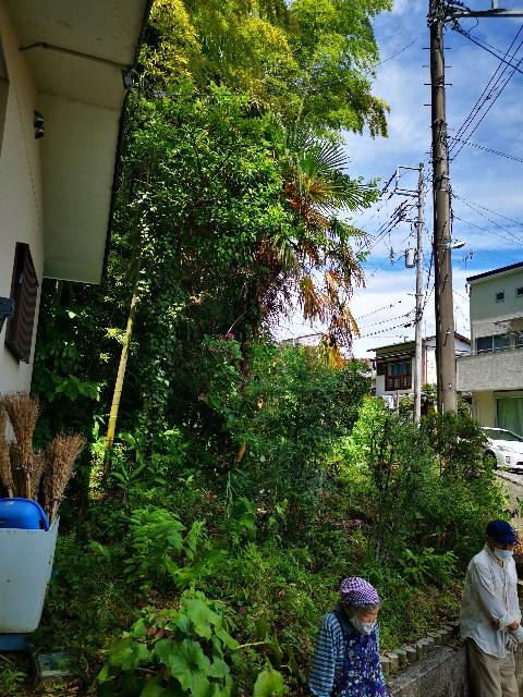 f:id:masato19641105:20210620213300j:image