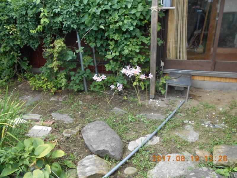 f:id:masaya50:20170820054640j:image:w300:left