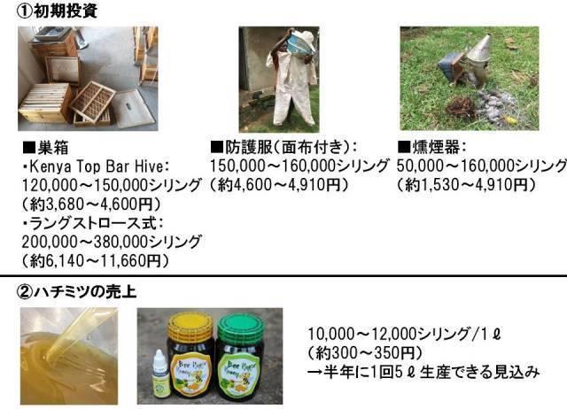 f:id:masayoshi-asaba-africa:20170409030536j:plain