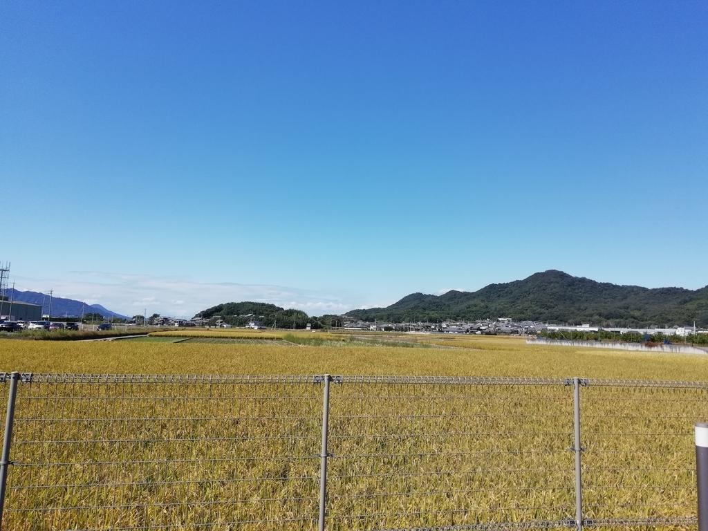 f:id:mashirokurosou:20181025114931j:plain