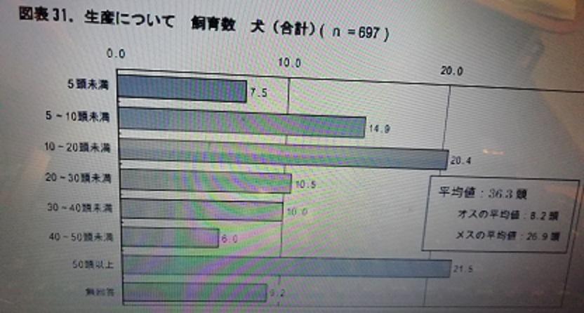 f:id:mashirokurosou:20190329004919j:plain