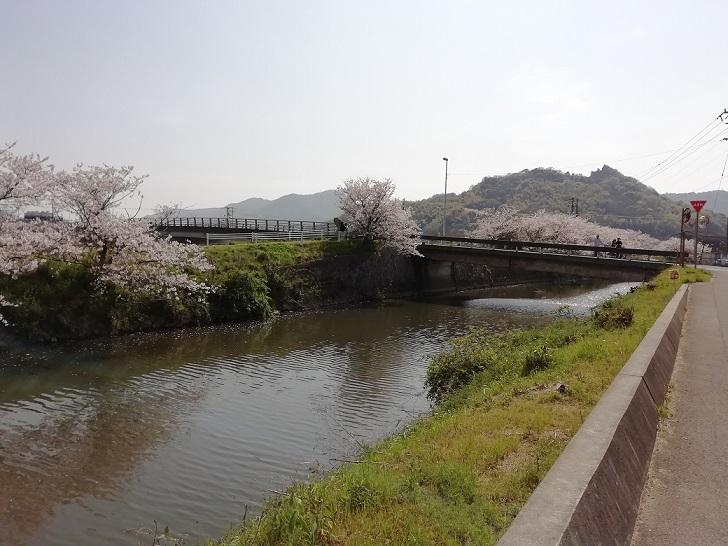 f:id:mashirokurosou:20190409110834j:plain