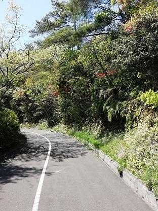 f:id:mashirokurosou:20200425201517j:plain
