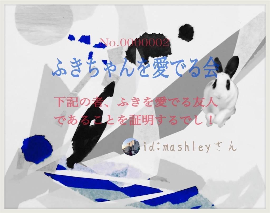 f:id:mashley_slt:20190305172946j:plain