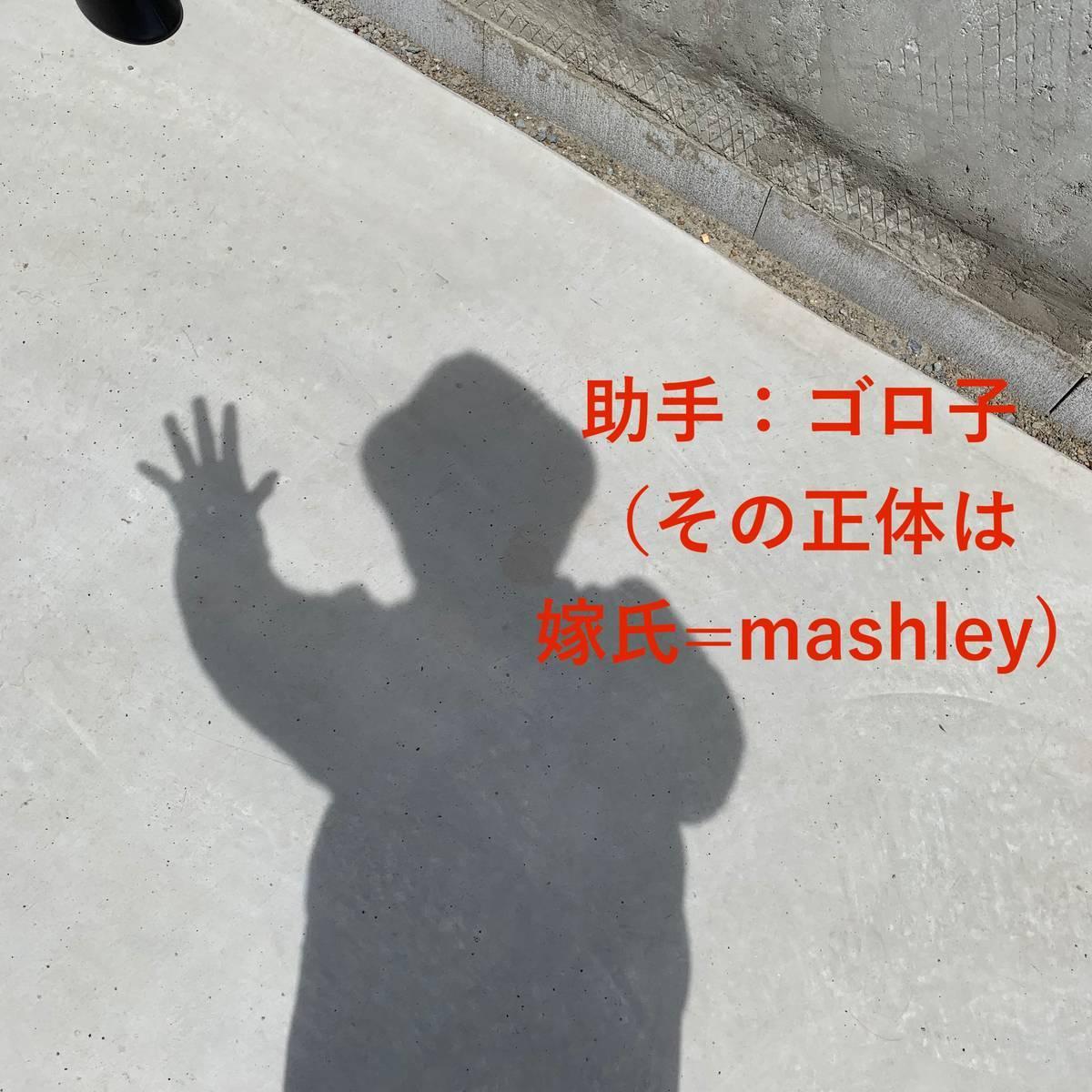 f:id:mashley_slt:20190417232008j:plain