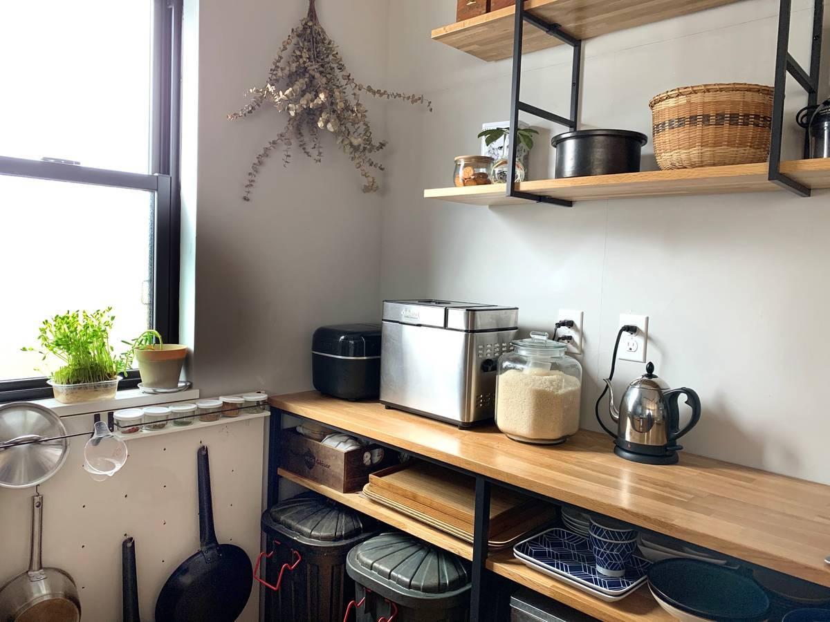 節約生活の食卓で活躍する豆苗。室内で育てられて再び蘇るコスパの高い野菜